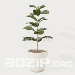3D Vases Model 2