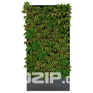 3d plant wall Model 16 free download