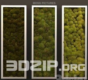 3d plant wall Model 19 free download