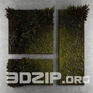 3d plant wall Model 17 free download