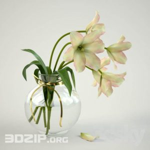 3d plant Model 67 free download