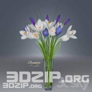3d plant Model 57 free download