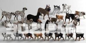 3d model animal 1 free download
