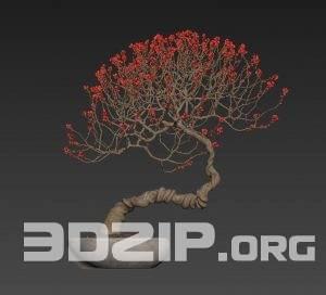 3d plant Model 111 free download