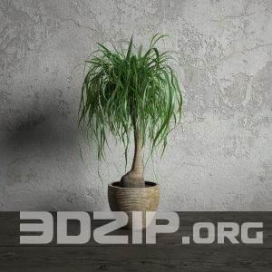 3d plant Model 133 free download