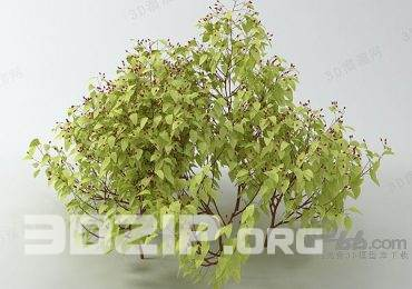 3d plant Model 150 free download