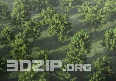 Free High quality 3D models Generic Tree Pack