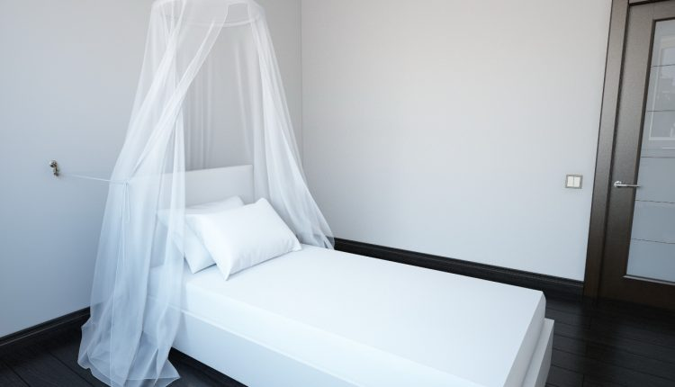 Free 3D Models Bed with a canopy