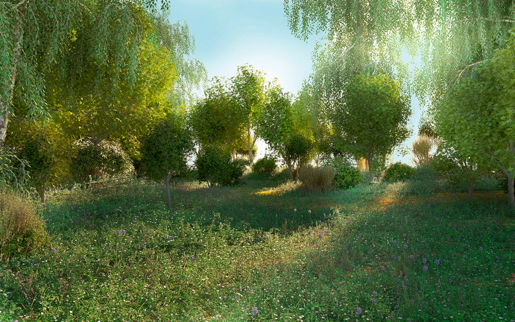 3dSkyHost: Free 3D-Tree Forest Glade From Oleg Hizhko