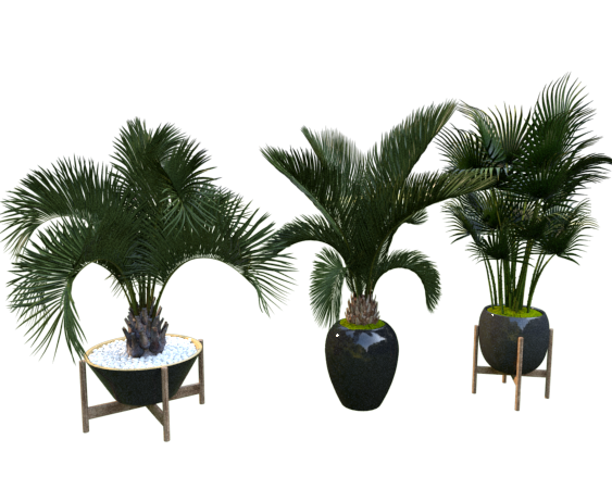 3d Plant Model 184 Free Download