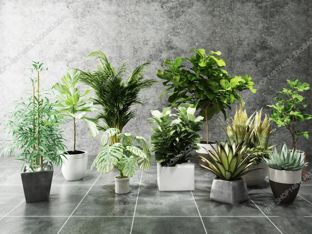 3dSkyHost: 3d Plant Model 201 Free Download