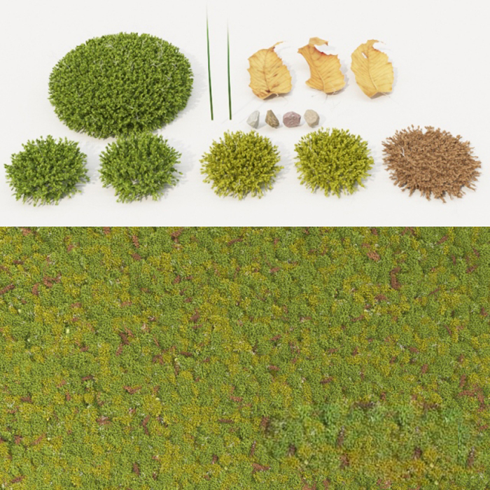 3d Moss Collection Model 255 Free Download