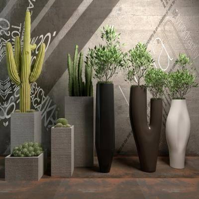 3d Plants Model 272 Free Download