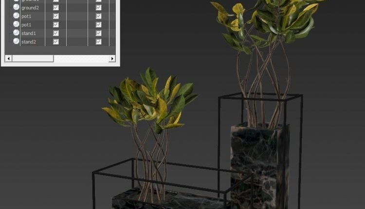 3d Plants Model 304 Free Download 2
